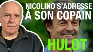 Nicolino : pourquoi le boy scout Hulot va se planter