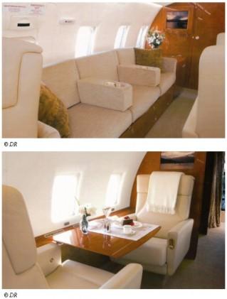 L'avion d'Aziz Miled ou de Belhassen Trabelsi ? - Mediapart - 04/02/11